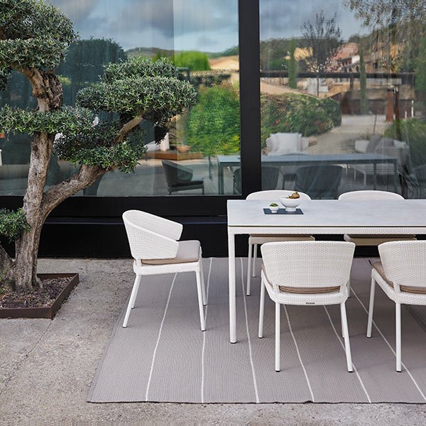 "timeless modernity: fennec dining armchairs in ivory enveloping 87"" dining table with porcelain top in natural white"
